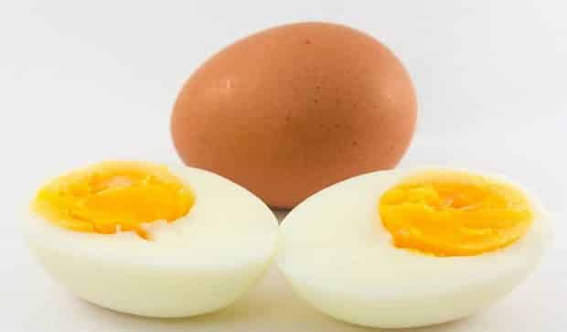 Eggs good for Muscle Growth
