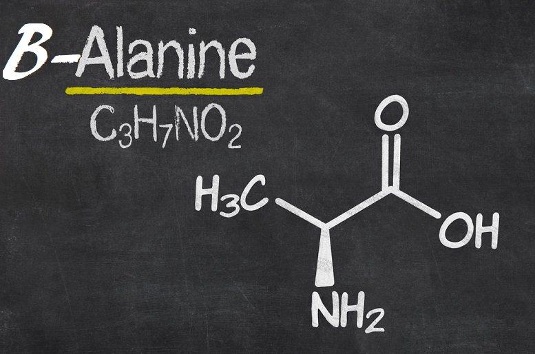 the ingredient beta-alanine