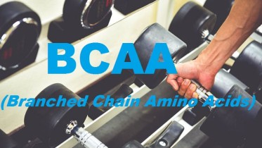 Best BCAA Supplements