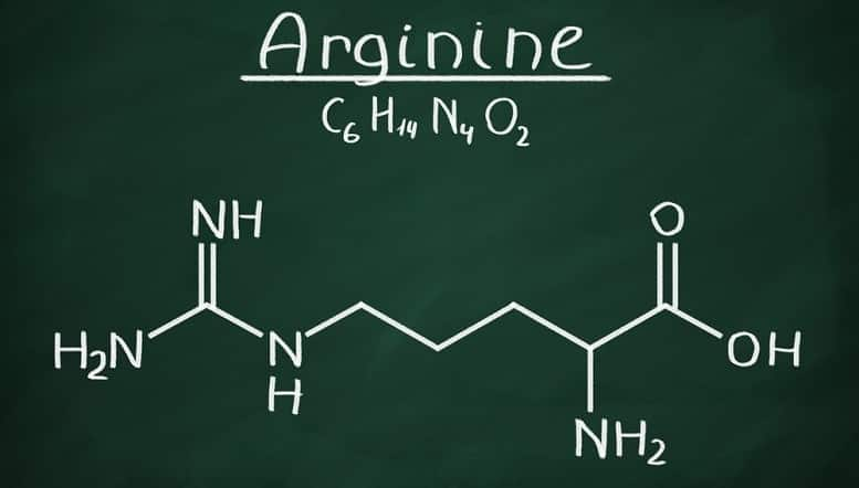 L-arginine for muscle pump